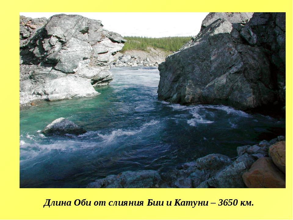 Длина Оби от слияния Бии и Катуни – 3650 км.