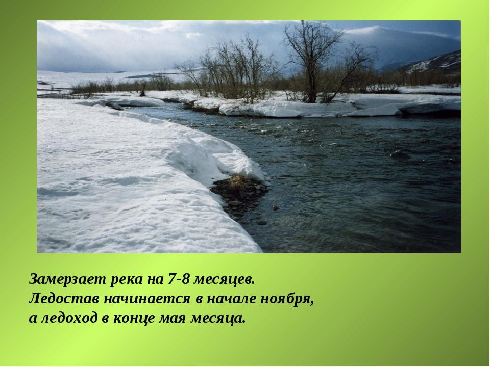 Замерзает река на 7-8 месяцев. Ледостав начинается в начале ноября, а ледоход...