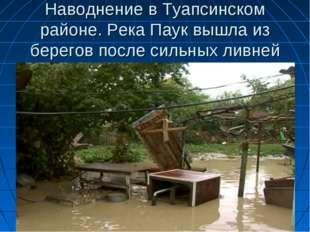 Наводнение в Туапсинском районе. Река Паук вышла из берегов после сильных лив