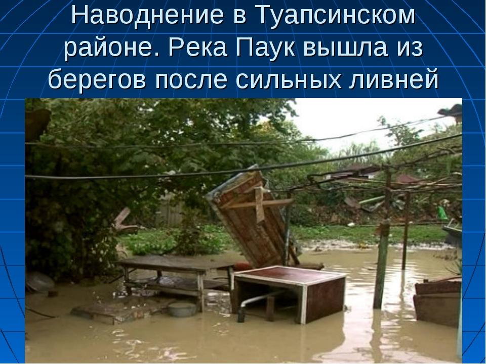 Наводнение в Туапсинском районе. Река Паук вышла из берегов после сильных лив...