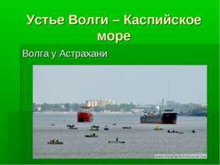 Устье Волги – Каспийское море Волга у Астрахани