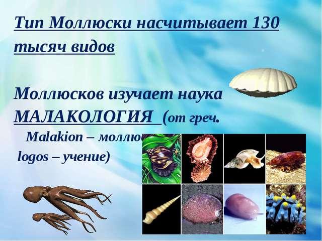 Тип Моллюски насчитывает 130 тысяч видов Моллюсков изучает наука МАЛАКОЛОГИЯ...