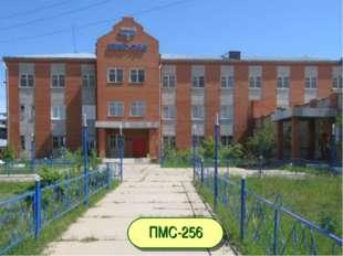 ПМС-256