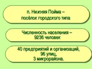 п. Нижняя Пойма – посёлок городского типа Численность населения – 9236 челове