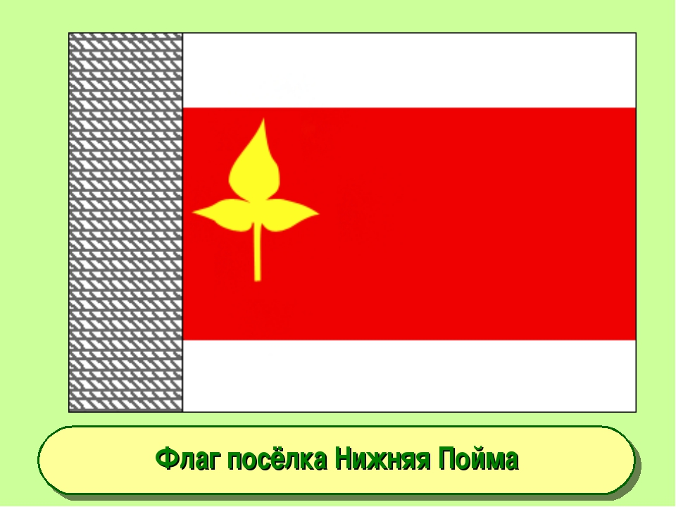 Флаг посёлка Нижняя Пойма
