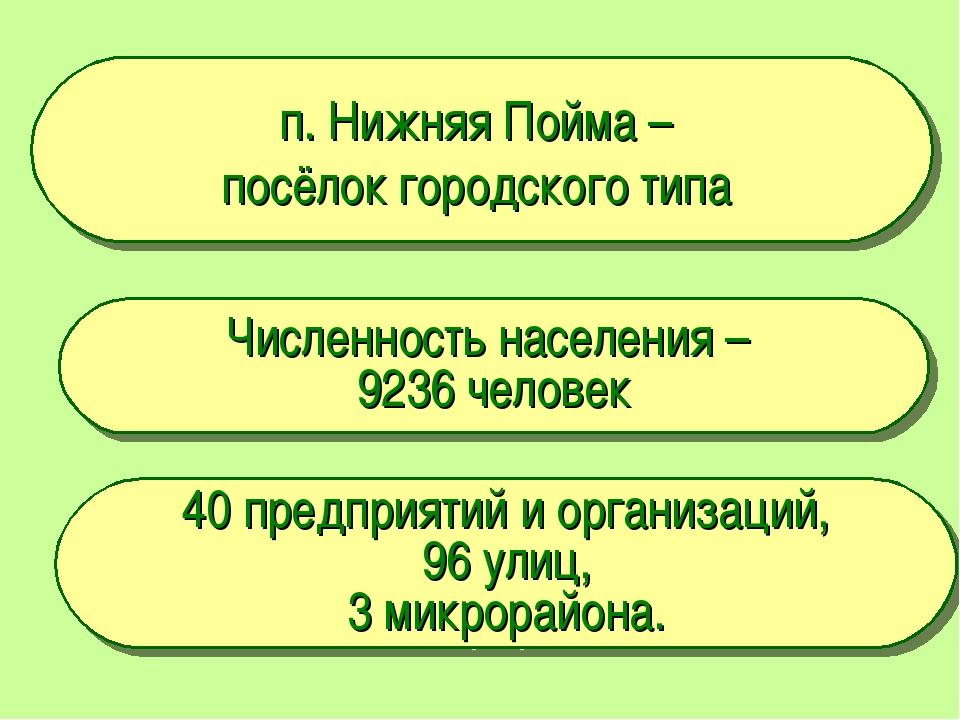 п. Нижняя Пойма – посёлок городского типа Численность населения – 9236 челове...