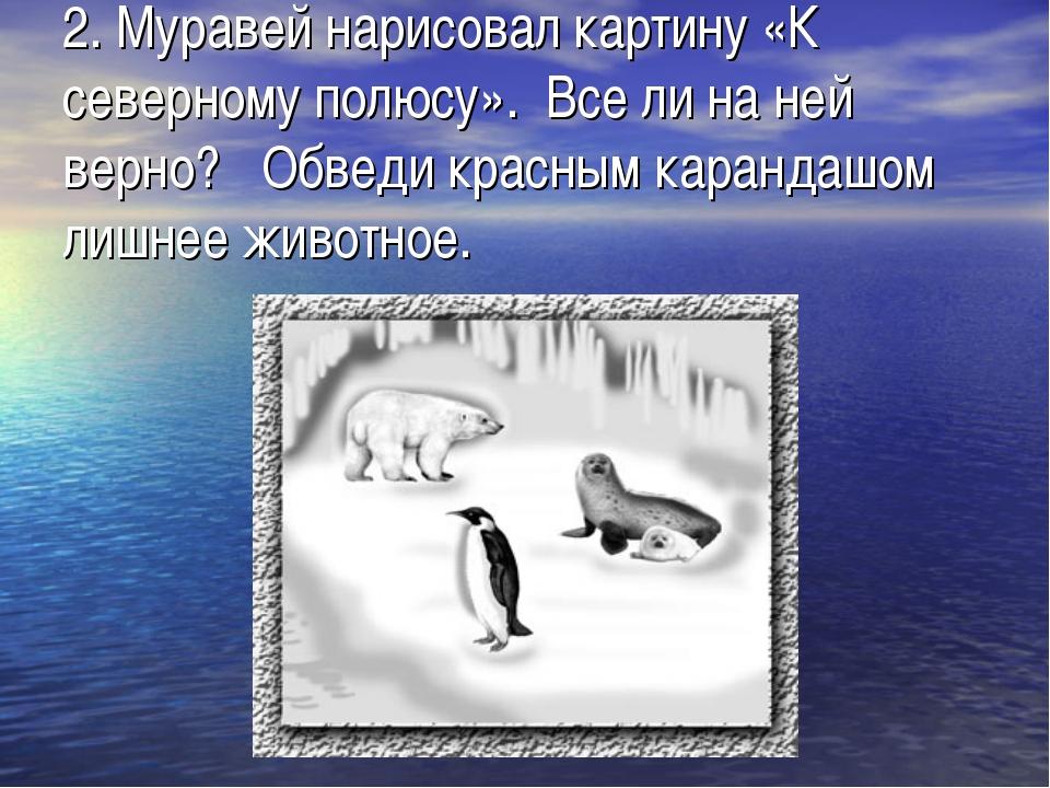 2.Муравей нарисовал картину «К северному полюсу». Все ли на ней верно?  Об...