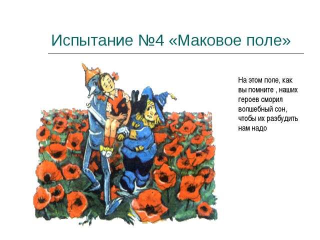 Испытание №4 «Маковое поле» На этом поле, как вы помните , наших героев смори...
