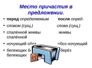 Место причастия в предложении. перед определяемым после опред. словом (сущ.)