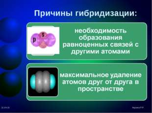 Причины гибридизации: Мусина Р.Р. * Мусина Р.Р.
