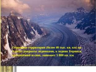 Огромные территории (более 40 тыс. кв. км) на Аляске покрыты ледниками, а лед