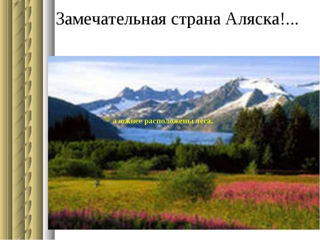 Замечательная страна Аляска!... а южнее расположены леса.