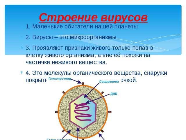1. Маленькие обитатели нашей планеты 2. Вирусы – это микроорганизмы 3. Проявл...