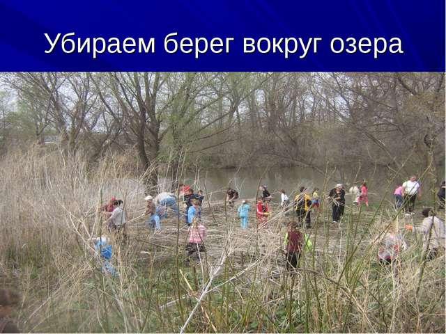 Убираем берег вокруг озера