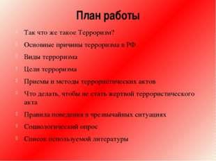 План работы Так что же такое Терроризм? Основные причины терроризма в РФ Виды
