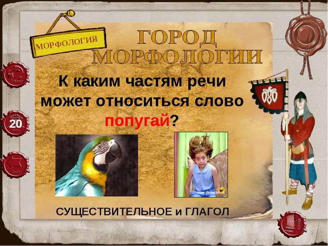 МОРФОЛОГИЯ 20 К каким частям речи может относиться слово попугай? СУЩЕСТВИТЕЛ...