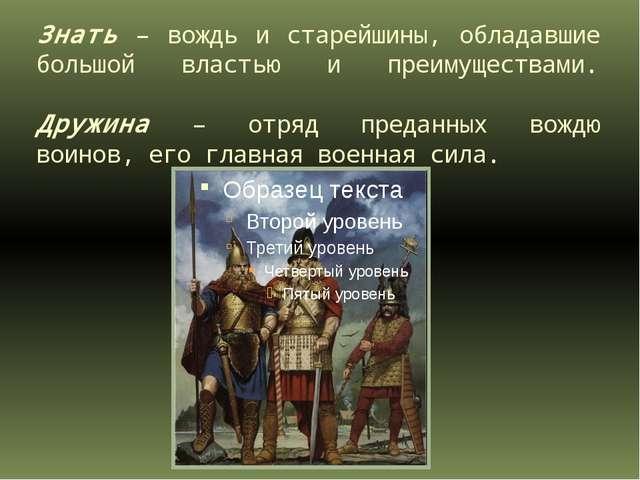 Знать – вождь и старейшины, обладавшие большой властью и преимуществами. Друж...