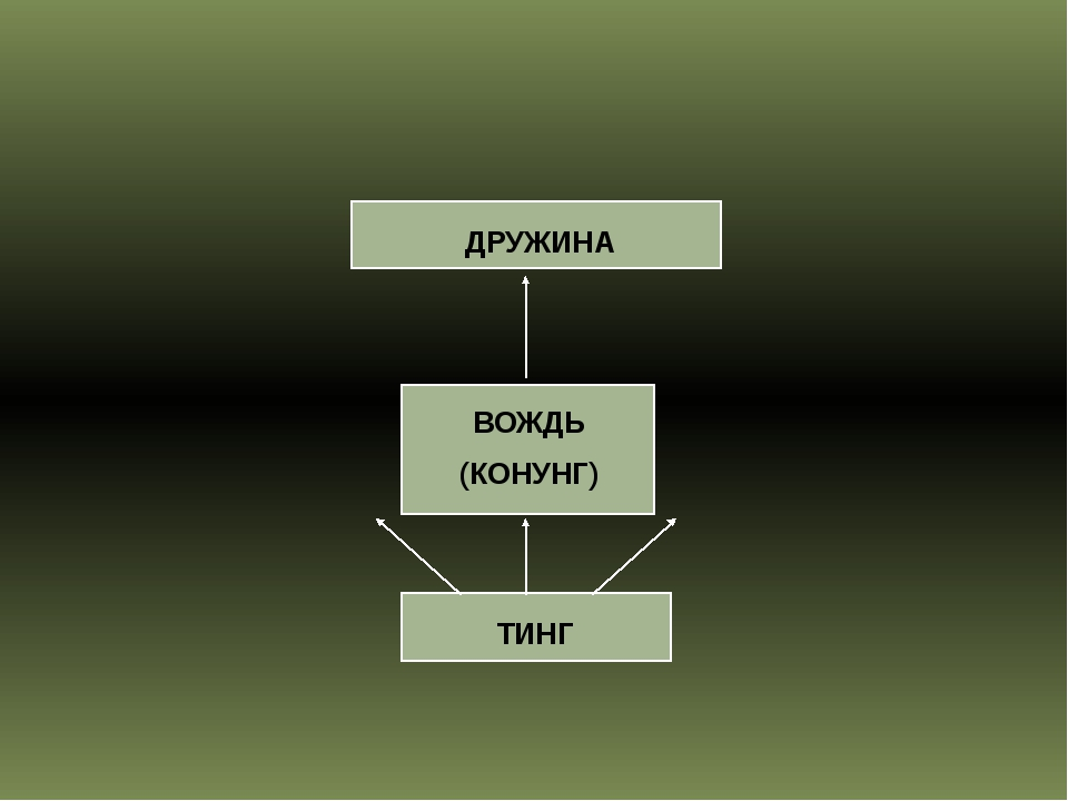 ДРУЖИНА ВОЖДЬ (КОНУНГ) ТИНГ