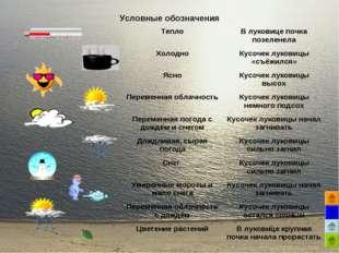 Условные обозначения ТеплоВ луковице почка позеленела ХолодноКусочек луко