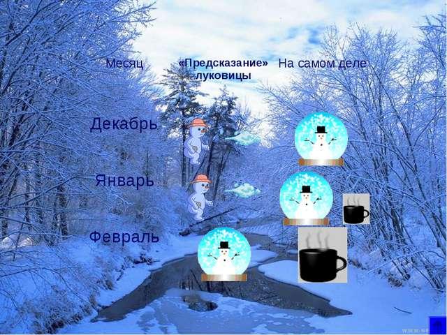 Месяц«Предсказание» луковицыНа самом деле Декабрь Январь Февраль