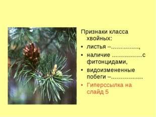 Признаки класса хвойных: листья –………….., наличие ……………с фитонцидами, видоизме