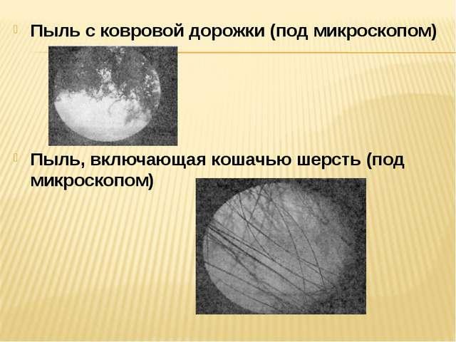 Пыль с ковровой дорожки (под микроскопом) Пыль, включающая кошачью шерсть (по...