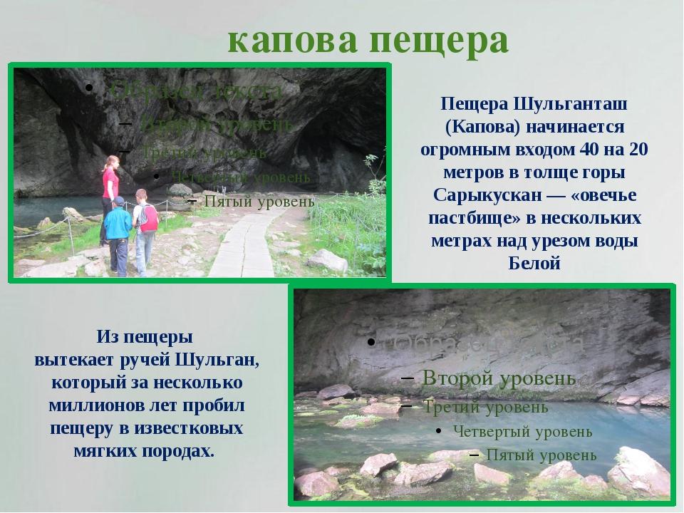 капова пещера Из пещеры вытекает ручей Шульган, который за несколько миллионо...