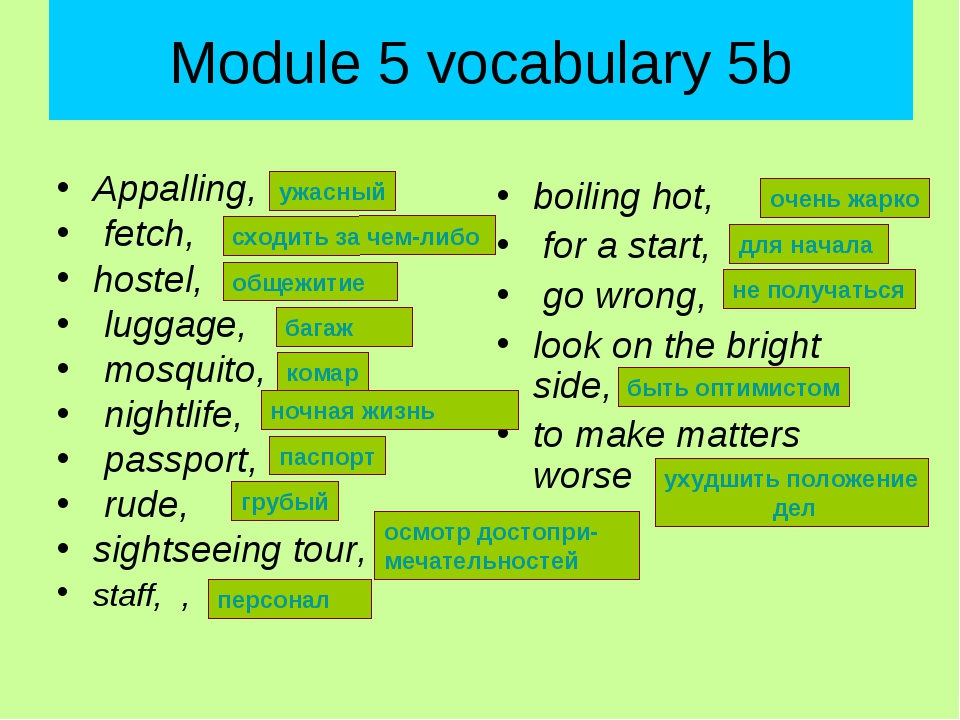 Module 5 vocabulary 5b Appalling, fetch, hostel, luggage, mosquito, nightlife...
