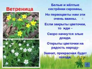 Кого ушедший от бабушки и дедушки Колобок первым встретил на своем пути? а)В