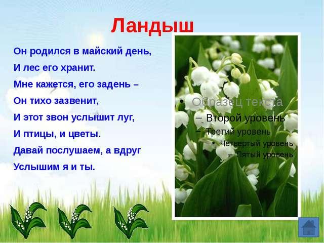 Медуница Не успел сойти белый снег, Появился ранний, смелый побег, А цветочки...