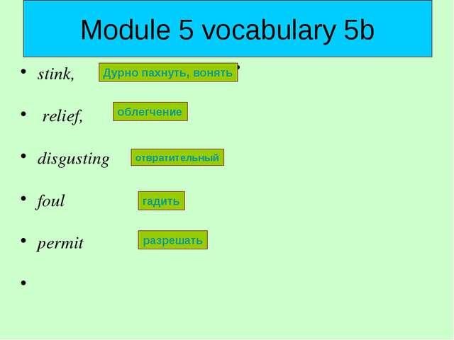 Module 5 vocabulary 5b stink, relief, disgusting foul permit Дурно пахнуть, в...