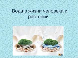 Вода в жизни человека и растений.