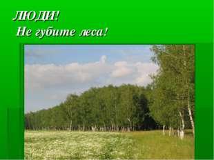 ЛЮДИ! Не губите леса!
