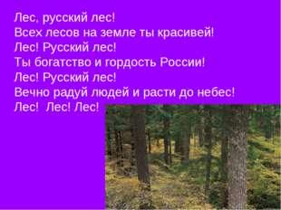 Лес, русский лес! Всех лесов на земле ты красивей! Лес! Русский лес! Ты богат