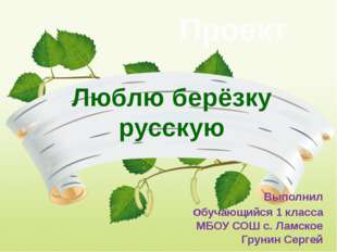 Люблю берёзку русскую Проект Выполнил обучающийся 1 класса МБОУ СОШ с. Ламск