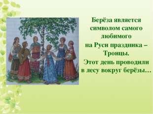 Берёза является символом самого любимого на Руси праздника – Троицы. Этот ден