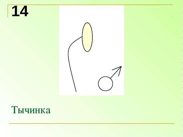 Тычинка 14