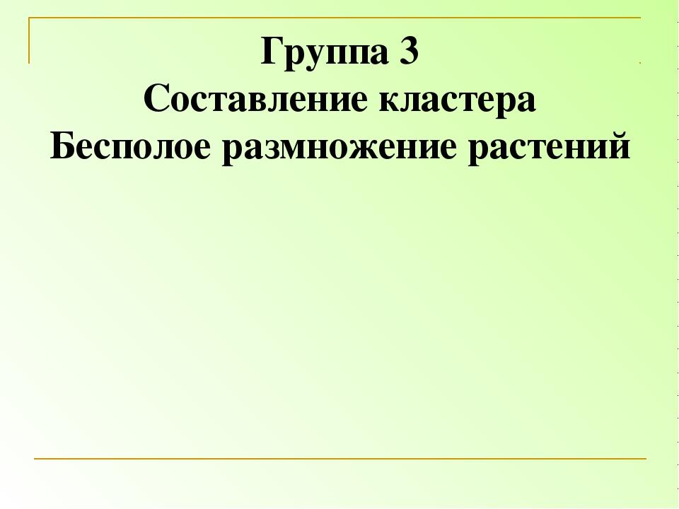 Группа 3 Составление кластера Бесполое размножение растений