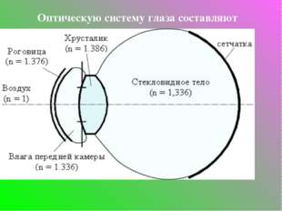 Оптическую систему глаза составляют роговица, водянистая влага, хрусталик и с