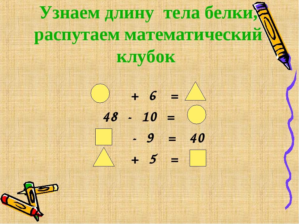 Узнаем длину тела белки, распутаем математический клубок + 6 = 48 - 10 = - 9...