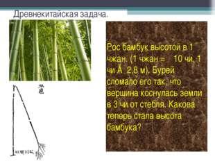 Древнекитайская задача. Рос бамбук высотой в 1 чжан. (1 чжан = 10 чи, 1 чи ≈