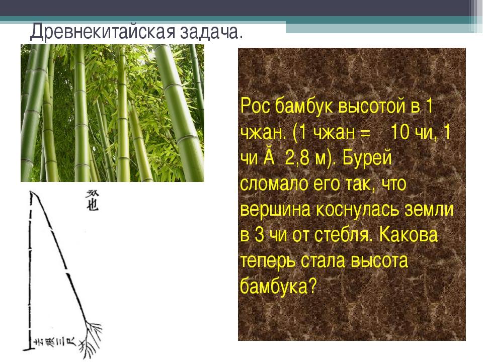 Древнекитайская задача. Рос бамбук высотой в 1 чжан. (1 чжан = 10 чи, 1 чи ≈...