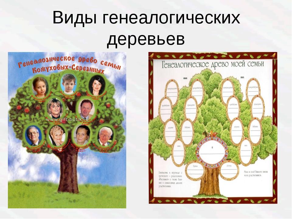 Виды генеалогических деревьев