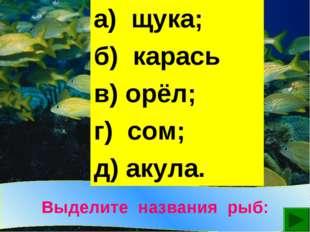 Выделите названия рыб: а) щука; б) карась; в) орёл; г) сом; д) акула.