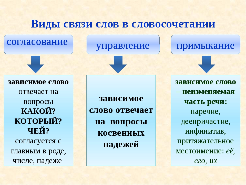 Виды связи слов в словосочетании согласование управление примыкание зависимо...
