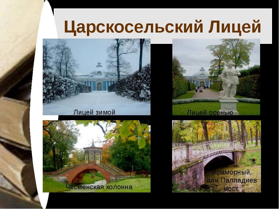 Царскосельский Лицей Лицей зимой Лицей осенью Чесменская колонна Мраморный, и...