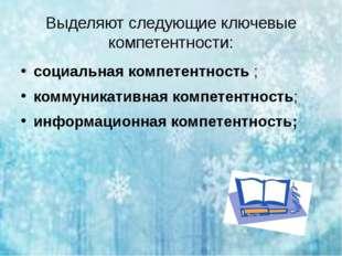 Выделяют следующие ключевые компетентности: социальная компетентность; комму