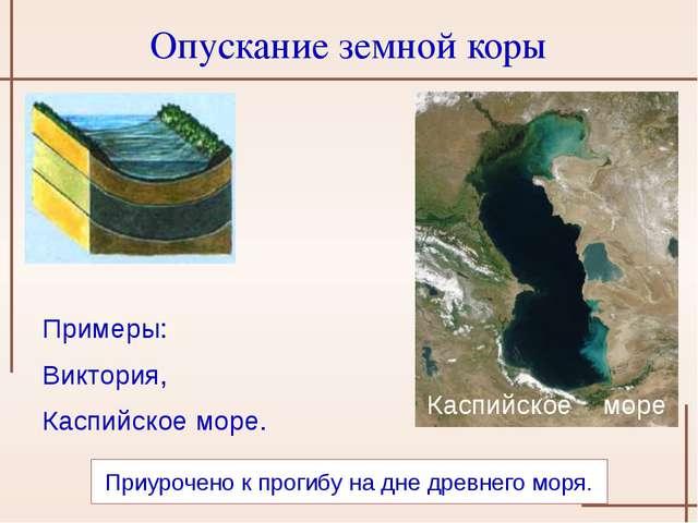 Приурочено к прогибу на дне древнего моря. Каспийское море Опускание земной...