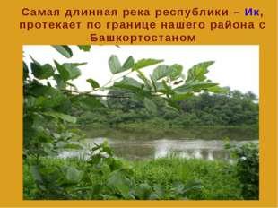 Самая длинная река республики – Ик, протекает по границе нашего района c Баш
