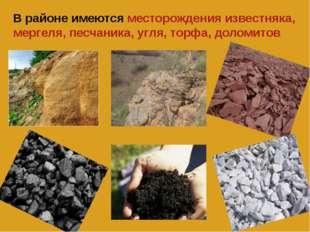 В районе имеются месторождения известняка, мергеля, песчаника, угля, торфа, д